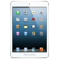 Photo Apple iPad mini Wi-Fi 16 Gb